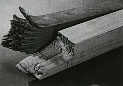 Прочность древесины на изгиб